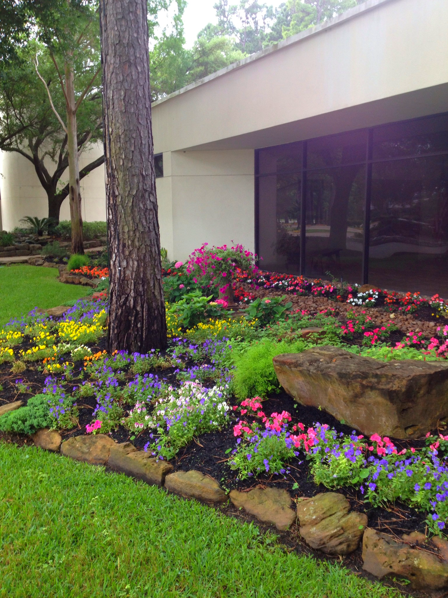 Services texas green gardens co landscape design for Green landscape design